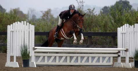 $30 for a one-hour horse riding lesson at Vogel Equine
