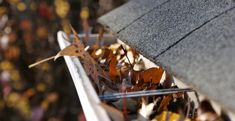 $49 for 100 feet of gutter cleaning and minor repairs from Prestige Cleaning