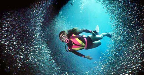 $520 for an Advanced Open Water Scuba Diving Certification Course